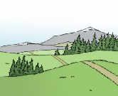 Berge und Wiesen